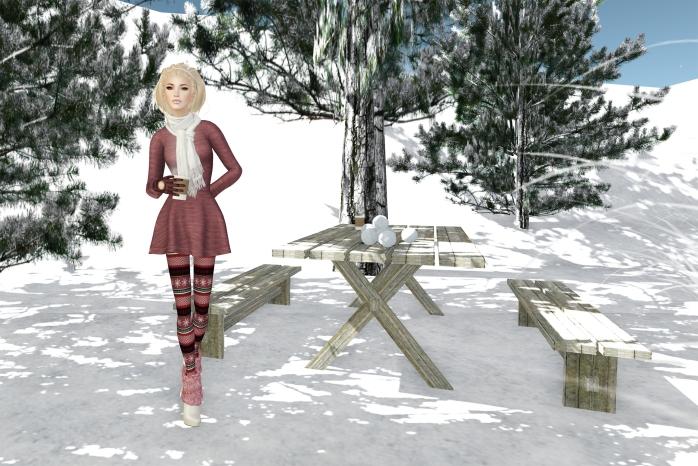 wintery-garden001