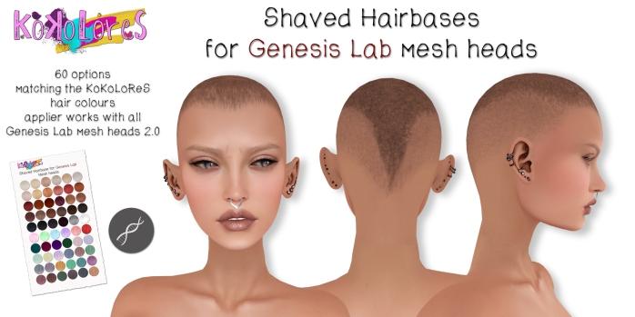 GenLab-hairbases
