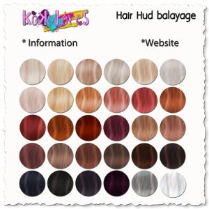 Hair-Hud-2015-balayage