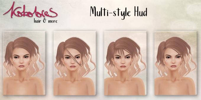 Lois-multi-style-hud.jpg